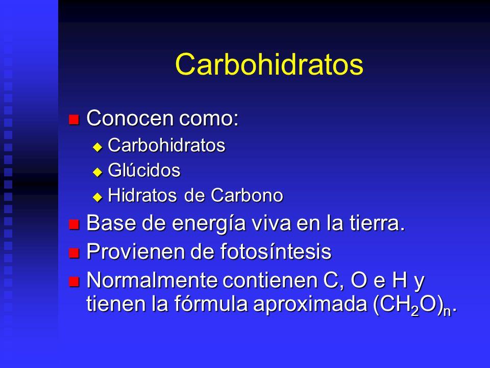 Carbohidratos Conocen como: Base de energía viva en la tierra.