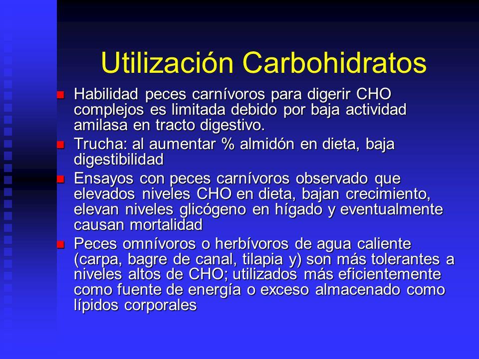 Utilización Carbohidratos