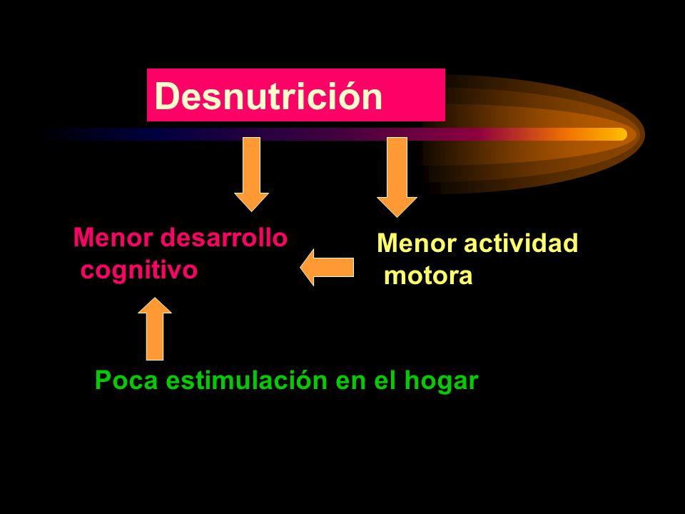 Desnutrición Menor desarrollo Menor actividad cognitivo motora