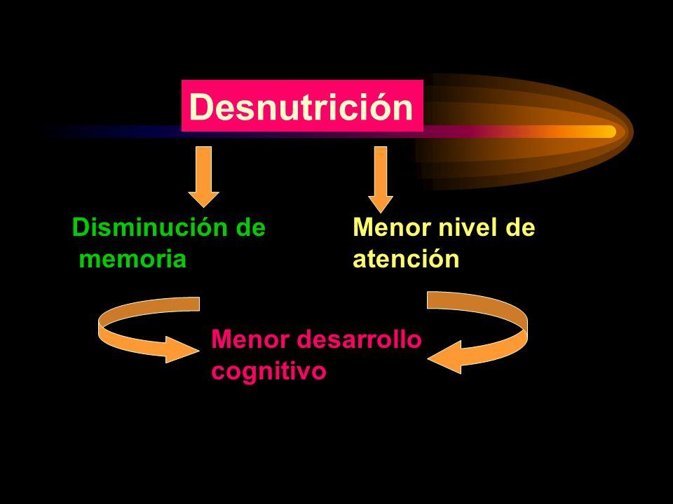Desnutrición Disminución de memoria Menor nivel de atención