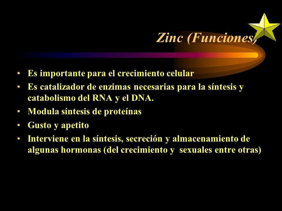 Zinc (Funciones) Es importante para el crecimiento celular