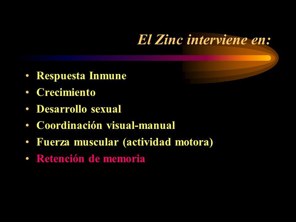 El Zinc interviene en: Respuesta Inmune Crecimiento Desarrollo sexual