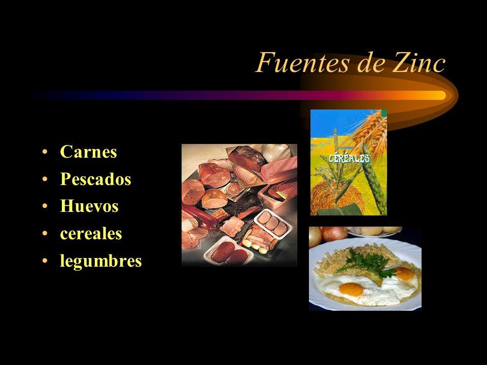 Fuentes de Zinc Carnes Pescados Huevos cereales legumbres