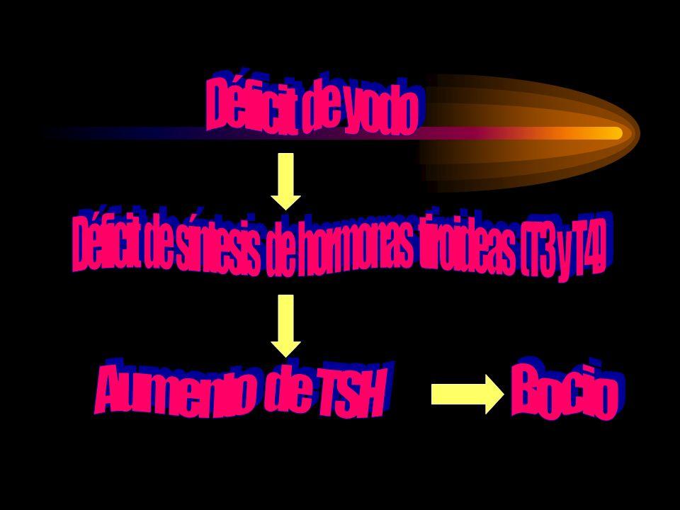 Déficit de síntesis de hormonas tiroideas (T3 y T4)