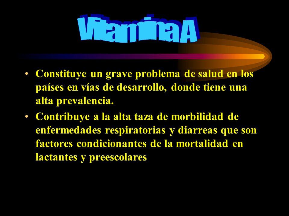 Vitamina A Constituye un grave problema de salud en los países en vías de desarrollo, donde tiene una alta prevalencia.