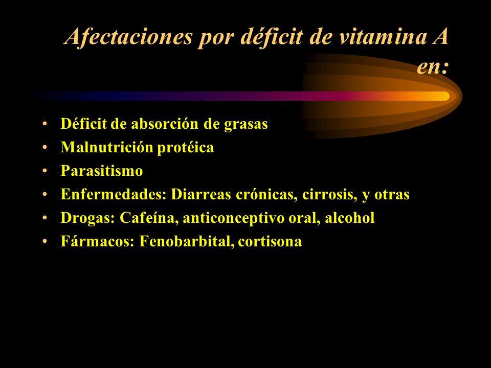 Afectaciones por déficit de vitamina A en: