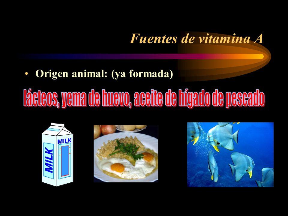 lácteos, yema de huevo, aceite de hígado de pescado
