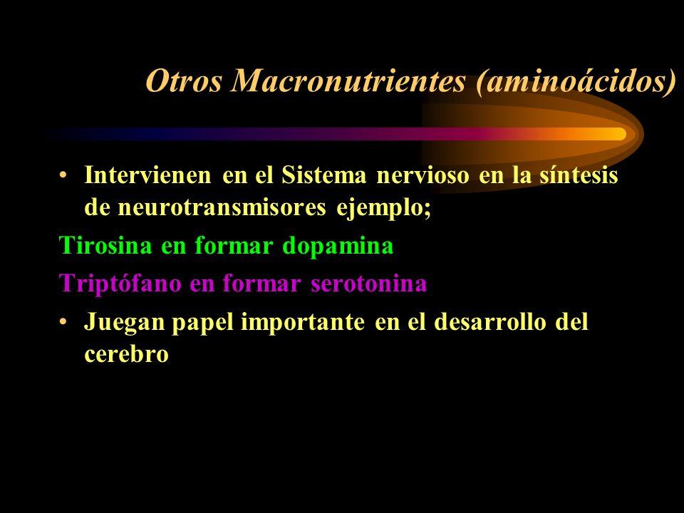 Otros Macronutrientes (aminoácidos)