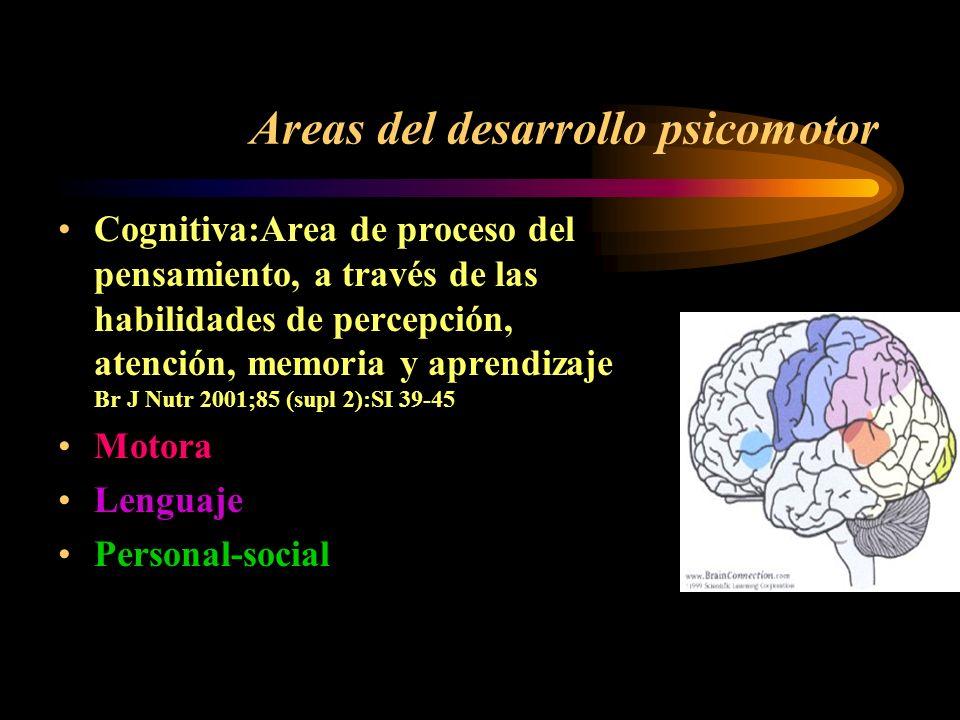 Areas del desarrollo psicomotor