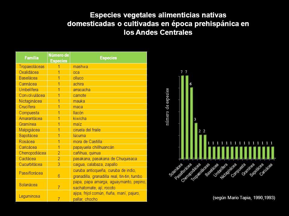 Especies vegetales alimenticias nativas domesticadas o cultivadas en época prehispánica en los Andes Centrales