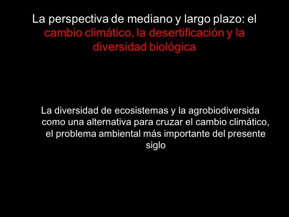 La perspectiva de mediano y largo plazo: el cambio climático, la desertificación y la diversidad biológica
