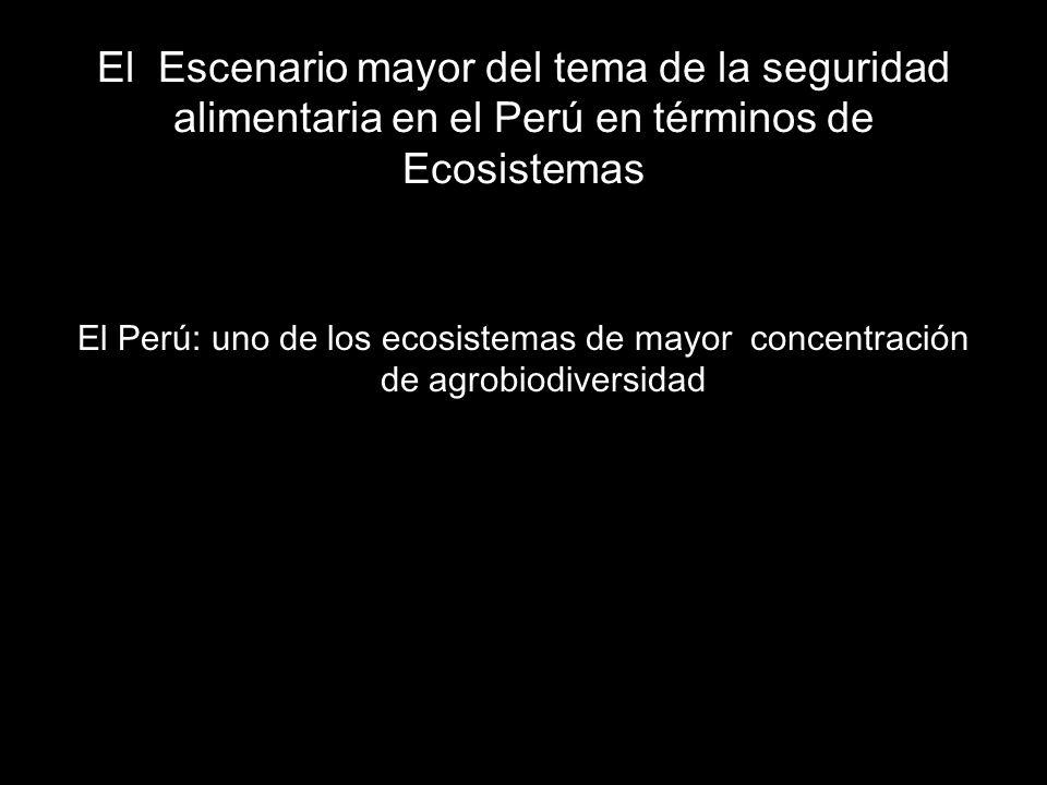 El Escenario mayor del tema de la seguridad alimentaria en el Perú en términos de Ecosistemas