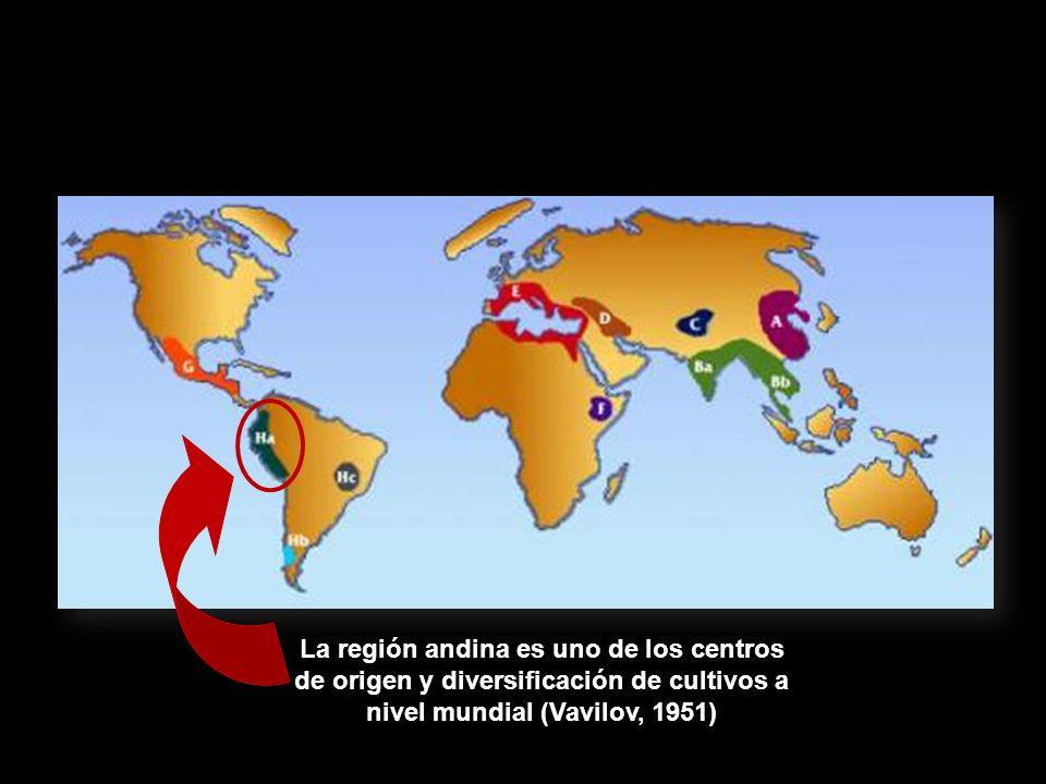 La región andina es uno de los centros de origen y diversificación de cultivos a nivel mundial (Vavilov, 1951)