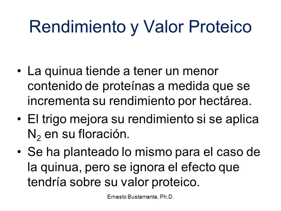 Rendimiento y Valor Proteico