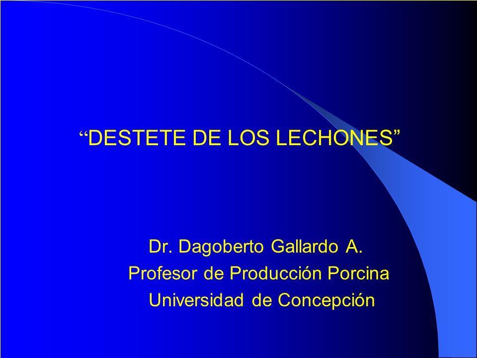 DESTETE DE LOS LECHONES