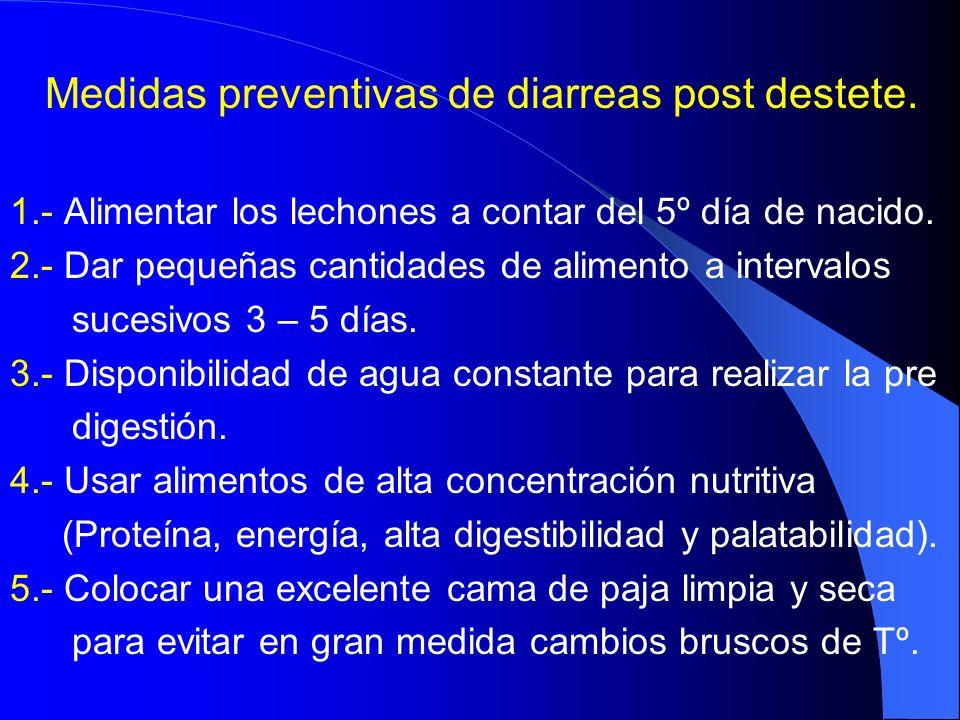 Medidas preventivas de diarreas post destete.