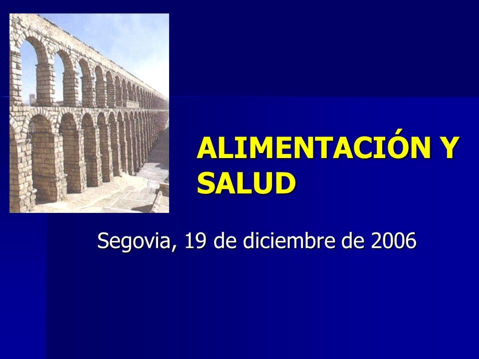 Segovia, 19 de diciembre de 2006