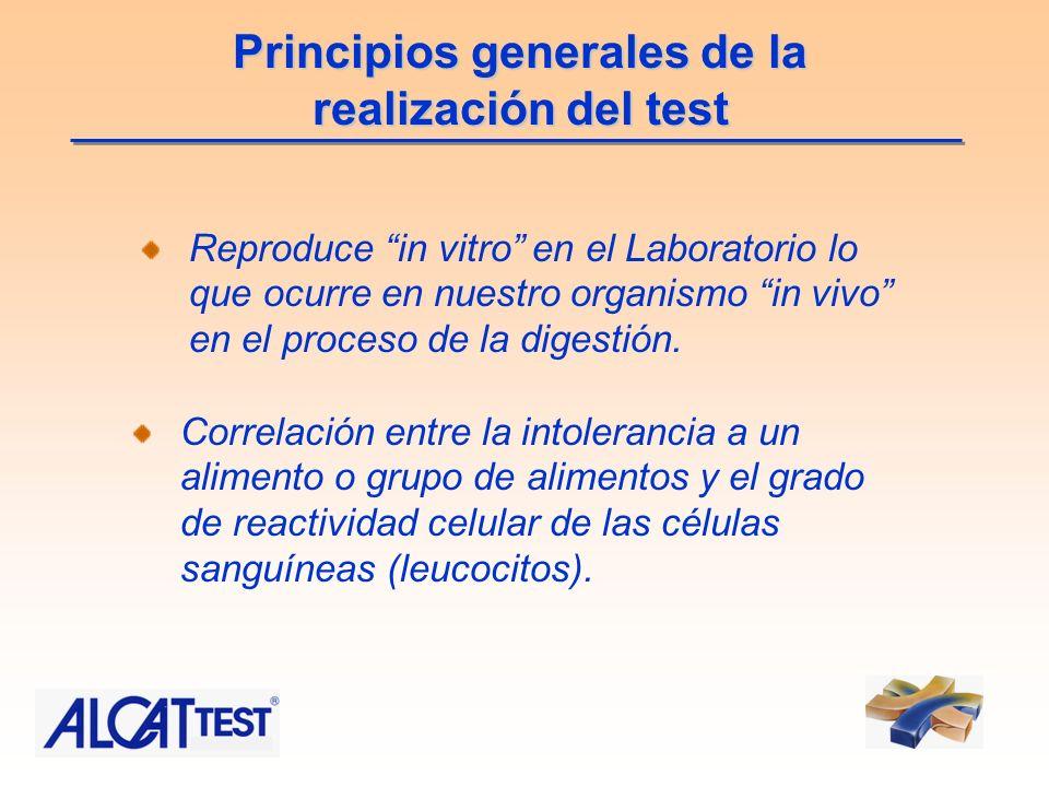 Principios generales de la realización del test