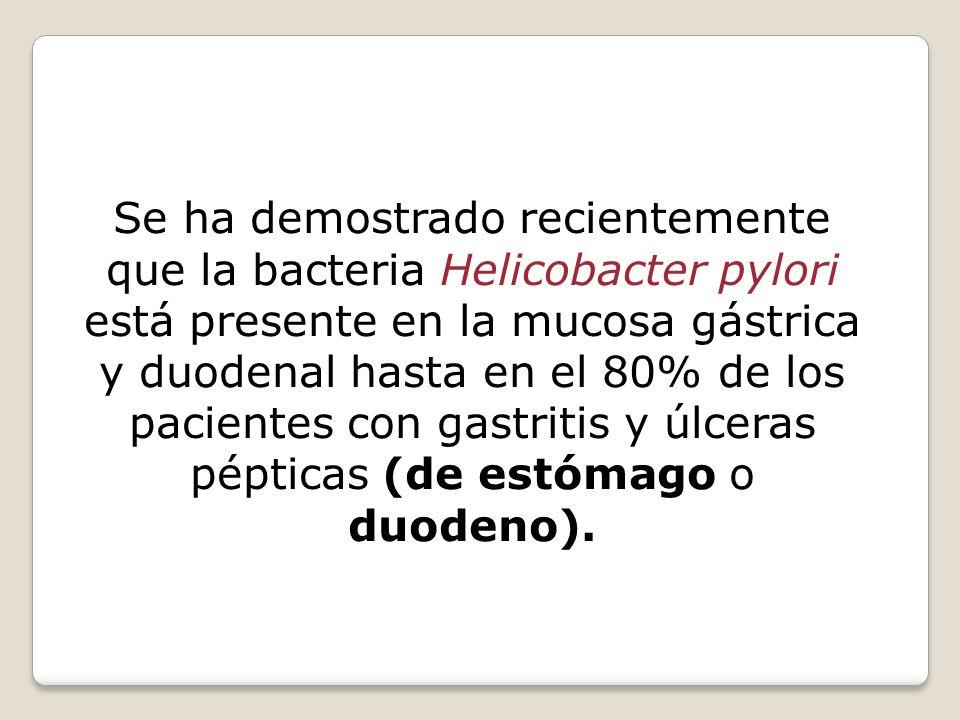 Se ha demostrado recientemente que la bacteria Helicobacter pylori está presente en la mucosa gástrica y duodenal hasta en el 80% de los pacientes con gastritis y úlceras pépticas (de estómago o duodeno).
