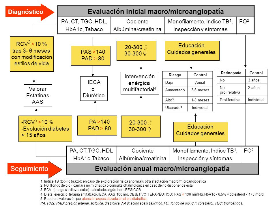 Evaluación inicial macro/microangiopatía