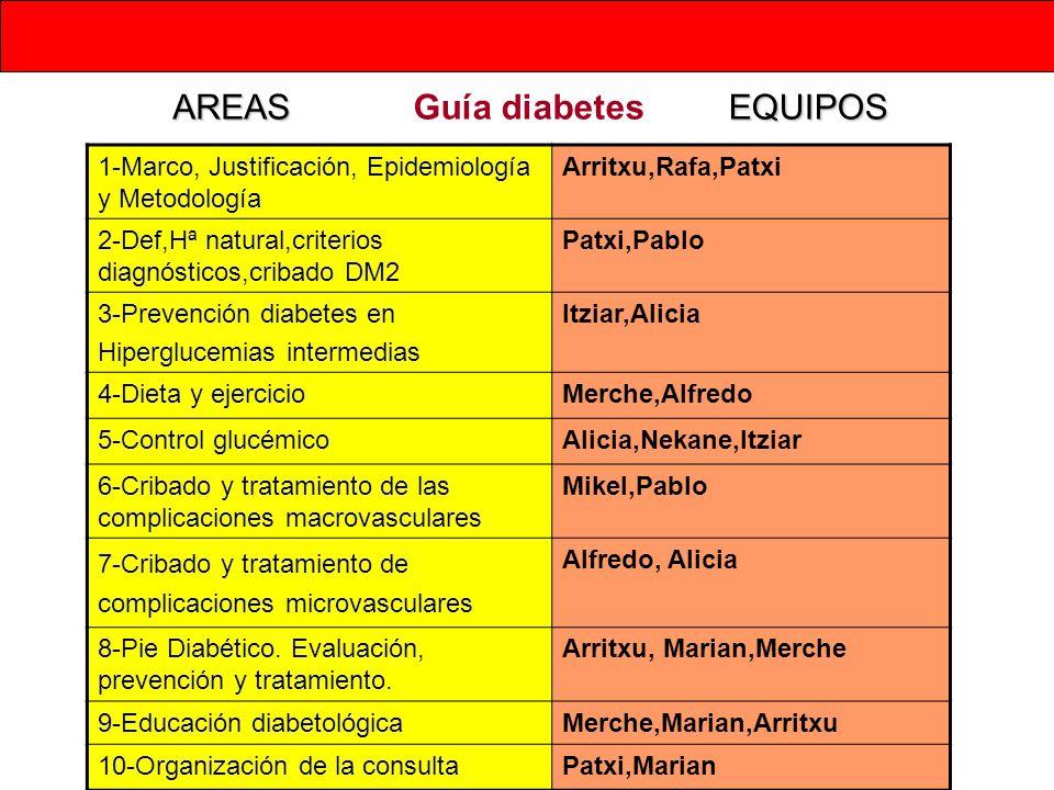 AREAS Guía diabetes EQUIPOS