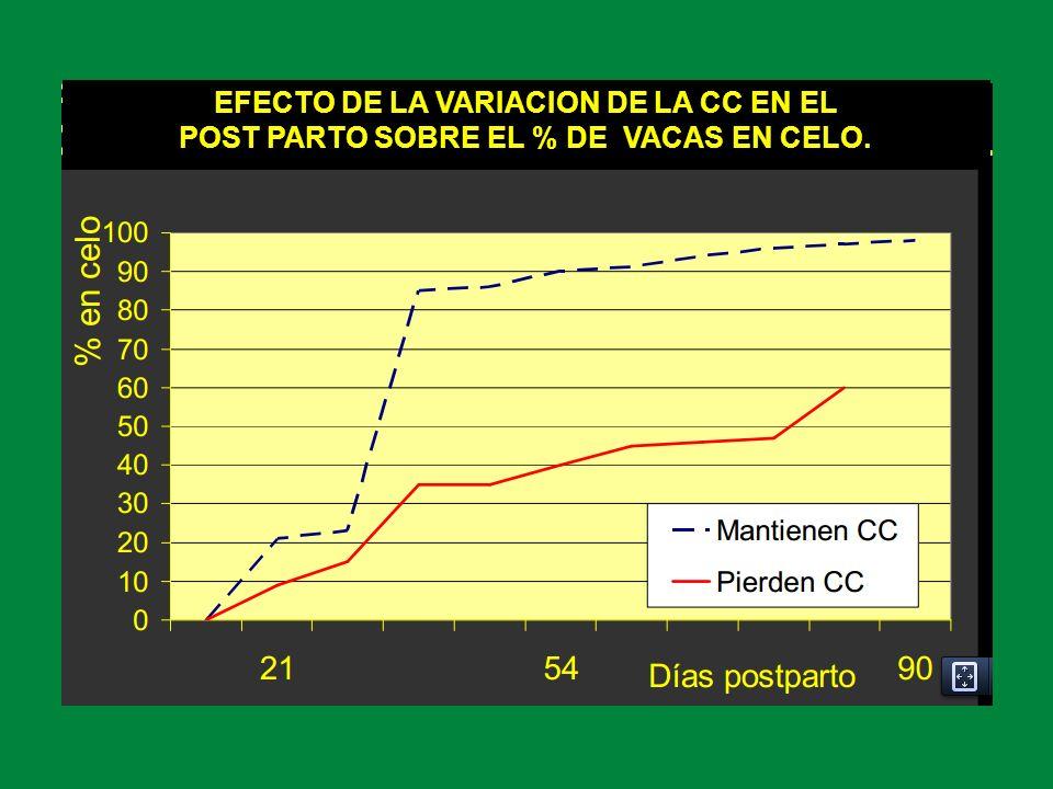 EFECTO DE LA VARIACION DE LA CC EN EL