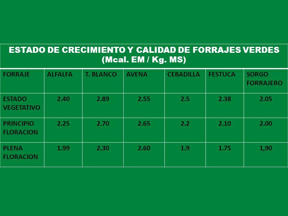 ESTADO DE CRECIMIENTO Y CALIDAD DE FORRAJES VERDES
