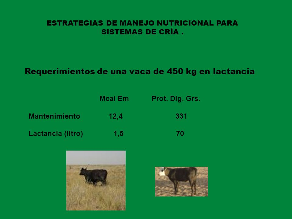 ESTRATEGIAS DE MANEJO NUTRICIONAL PARA SISTEMAS DE CRÍA .