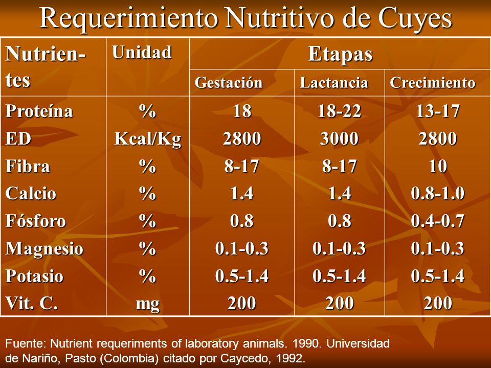 Requerimiento Nutritivo de Cuyes