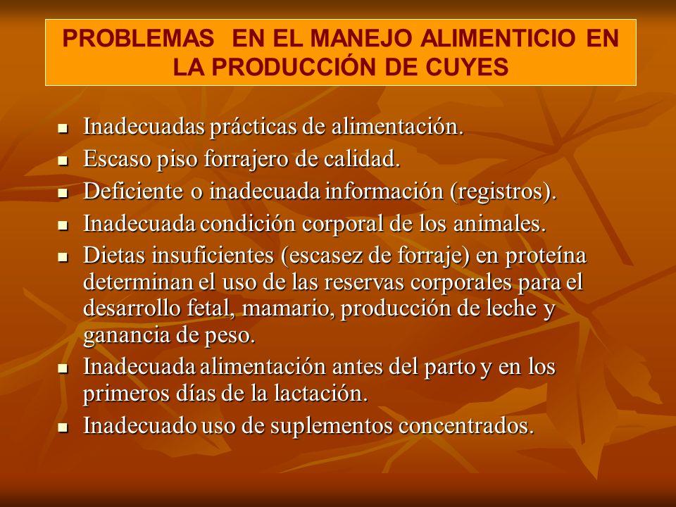 PROBLEMAS EN EL MANEJO ALIMENTICIO EN LA PRODUCCIÓN DE CUYES