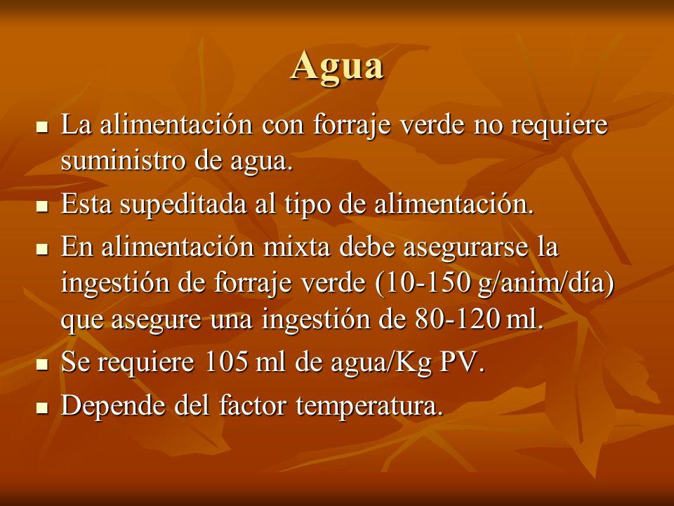 Agua La alimentación con forraje verde no requiere suministro de agua.