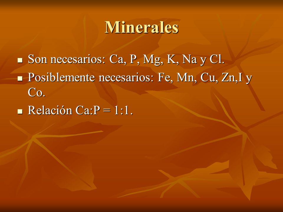Minerales Son necesarios: Ca, P, Mg, K, Na y Cl.