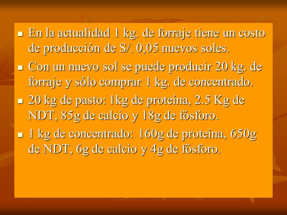 En la actualidad 1 kg. de forraje tiene un costo de producción de S/