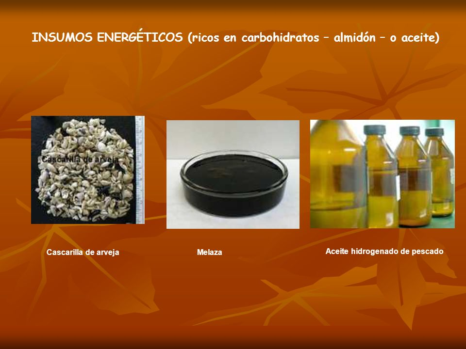 INSUMOS ENERGÉTICOS (ricos en carbohidratos – almidón – o aceite)