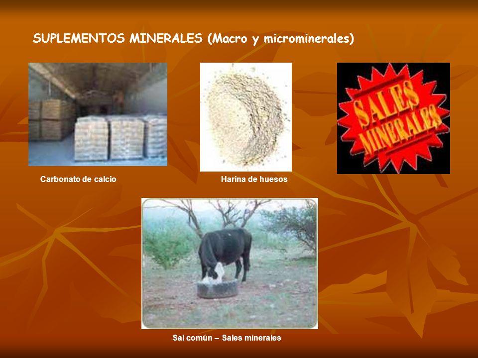 SUPLEMENTOS MINERALES (Macro y microminerales)
