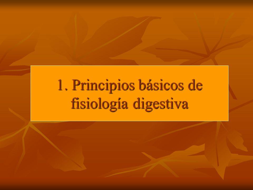 1. Principios básicos de fisiología digestiva