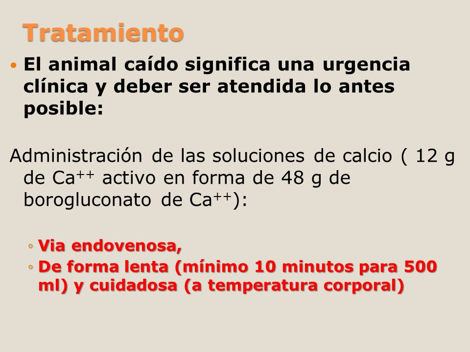 TratamientoEl animal caído significa una urgencia clínica y deber ser atendida lo antes posible: