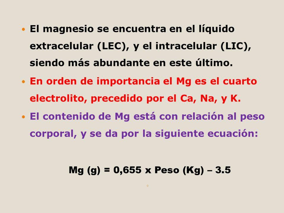 El magnesio se encuentra en el líquido extracelular (LEC), y el intracelular (LIC), siendo más abundante en este último.