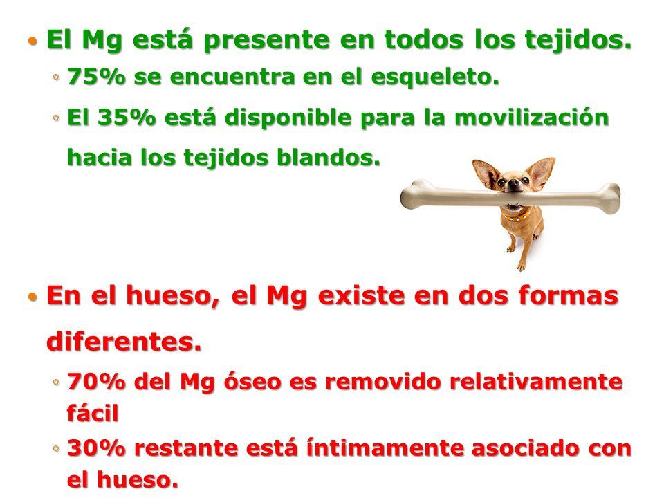El Mg está presente en todos los tejidos.