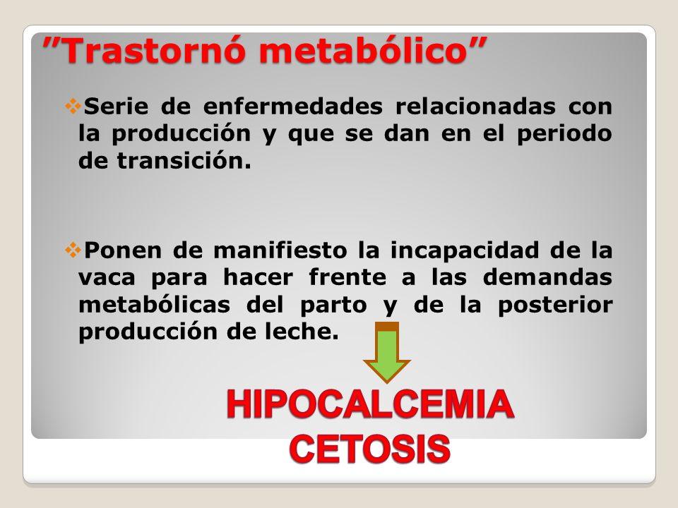 Trastornó metabólico