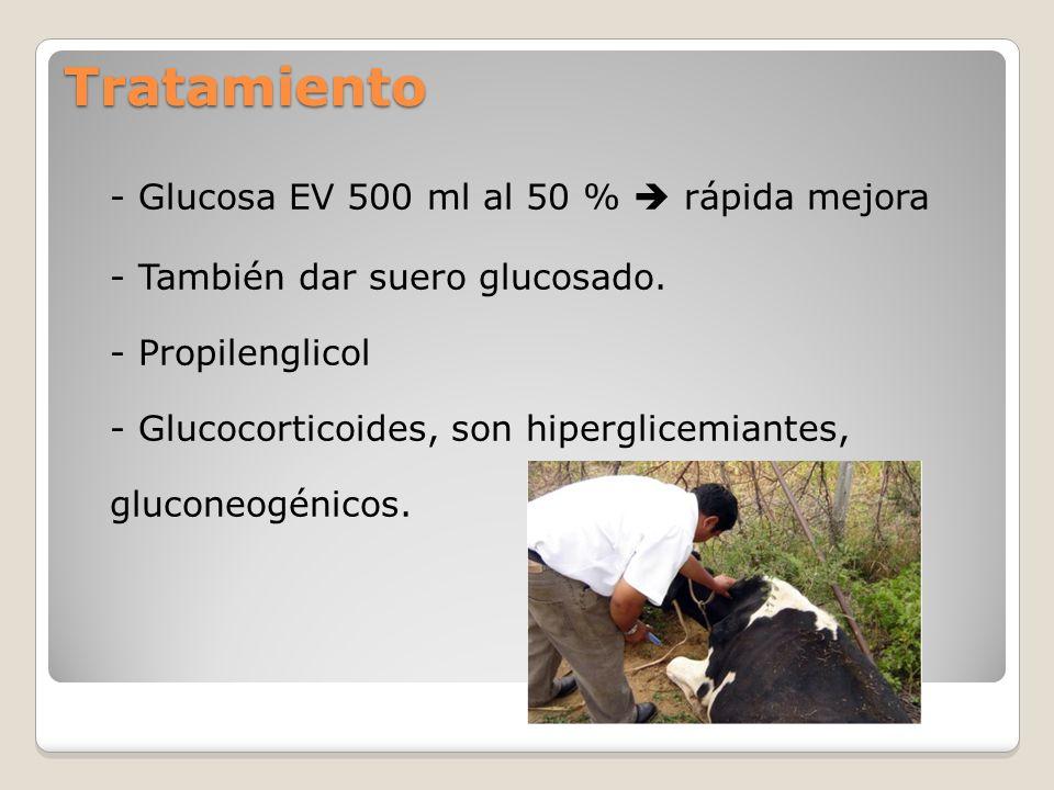 Tratamiento - Glucosa EV 500 ml al 50 %  rápida mejora