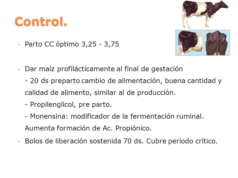 Control. Parto CC óptimo 3,25 - 3,75