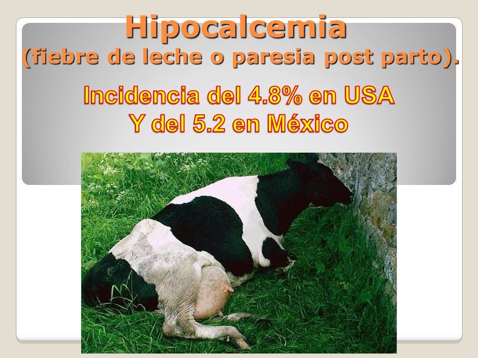 Hipocalcemia (fiebre de leche o paresia post parto).