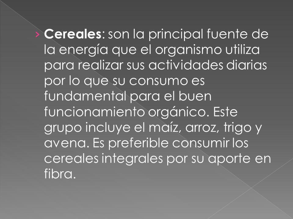 Cereales: son la principal fuente de la energía que el organismo utiliza para realizar sus actividades diarias por lo que su consumo es fundamental para el buen funcionamiento orgánico.