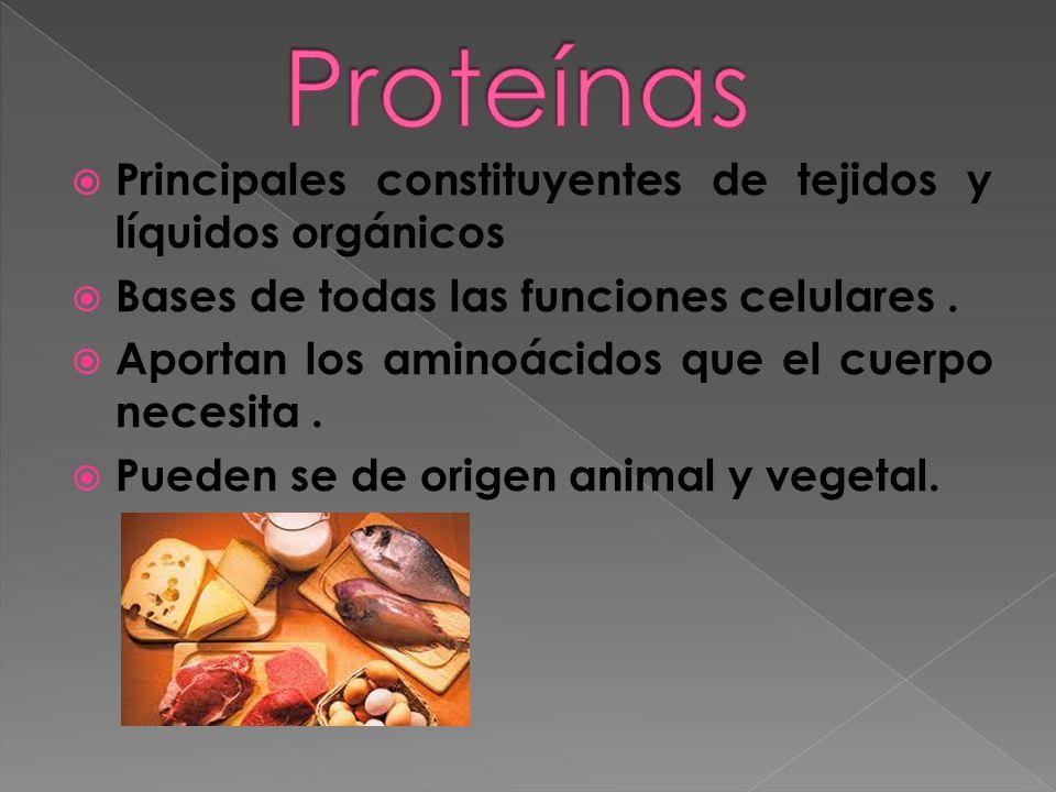Proteínas Principales constituyentes de tejidos y líquidos orgánicos