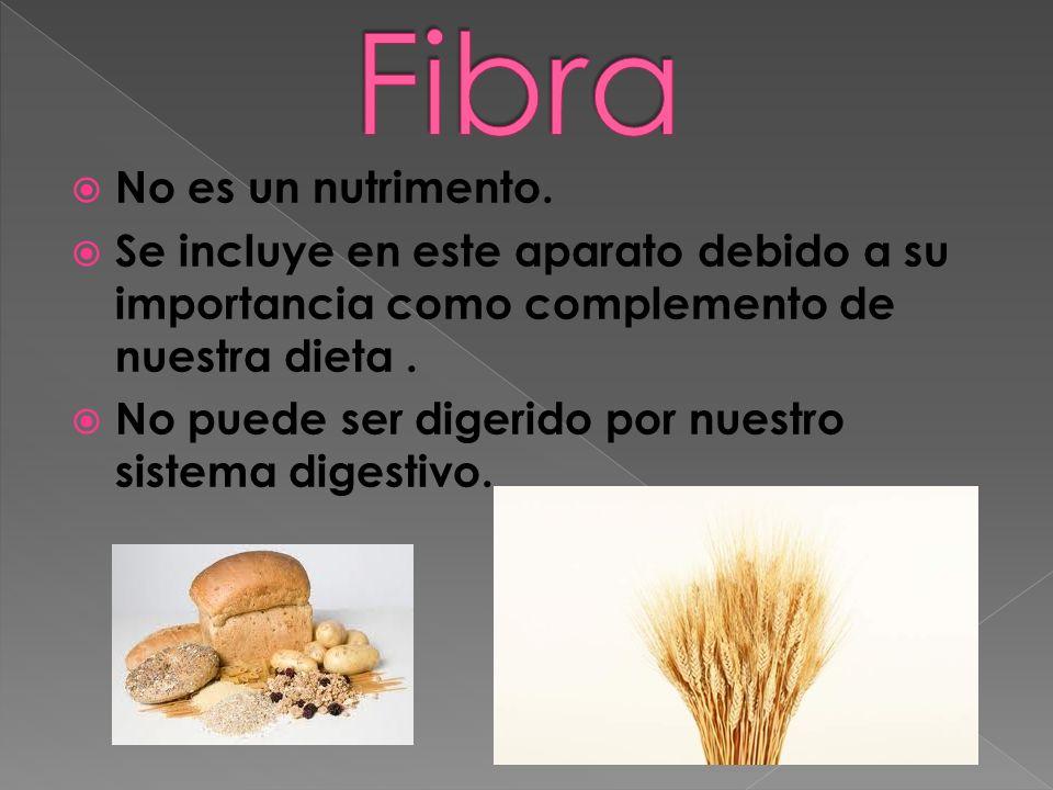 Fibra No es un nutrimento.