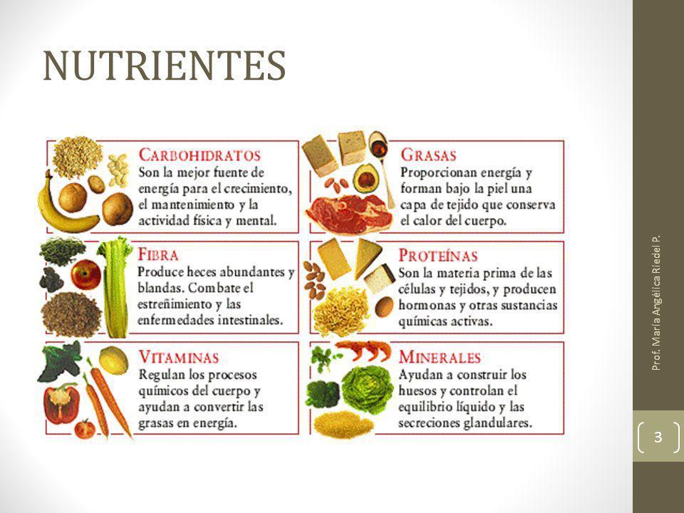 NUTRIENTES Prof. María Angélica Riedel P.