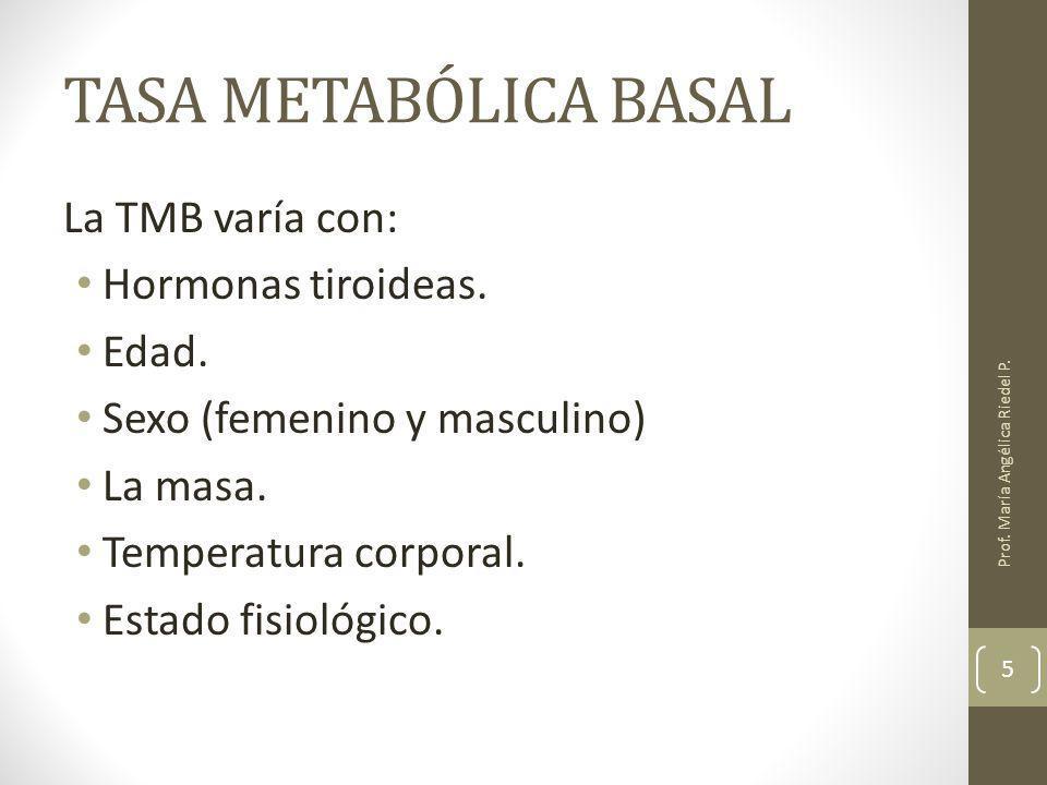 TASA METABÓLICA BASAL La TMB varía con: Hormonas tiroideas. Edad.