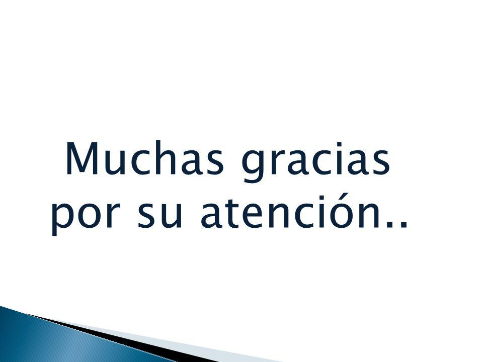 Muchas gracias por su atención..