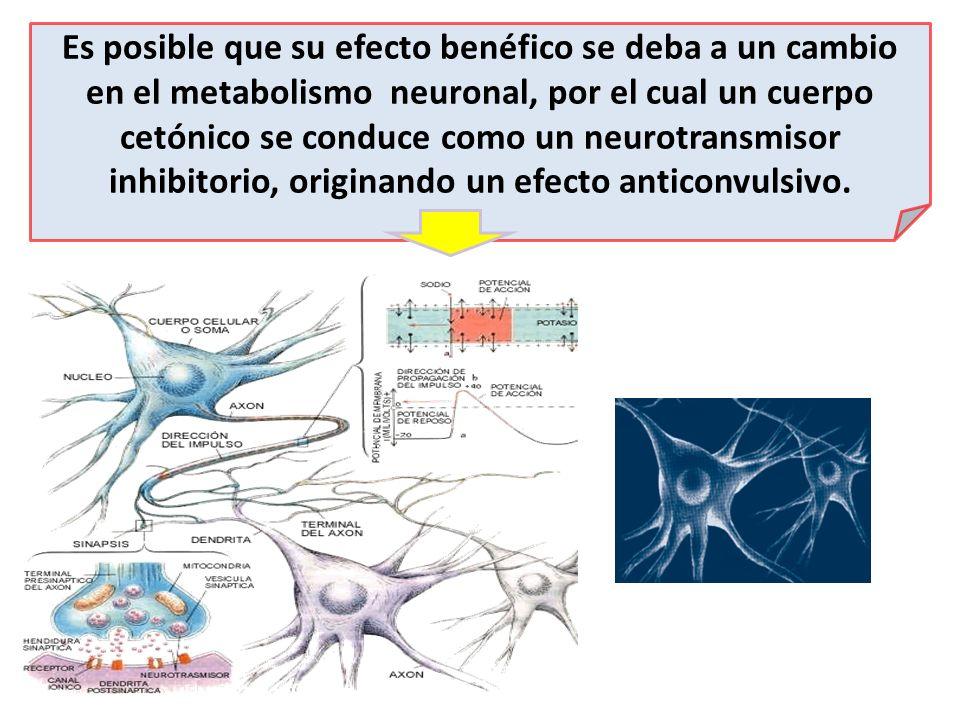 Es posible que su efecto benéfico se deba a un cambio en el metabolismo neuronal, por el cual un cuerpo cetónico se conduce como un neurotransmisor inhibitorio, originando un efecto anticonvulsivo.